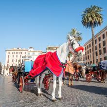 Plaza España de Roma